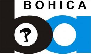 bohica-bart