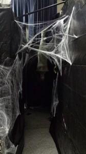 spiderlair